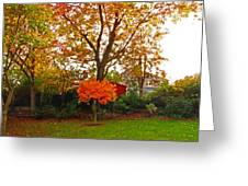 Autumn Garden Greeting Card by Bai Qing Lyon