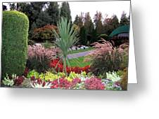 Autumn Gardens In Vancouver Greeting Card by Will Borden