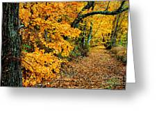 Autumn In Tennessee Greeting Card by Cheryl Davis