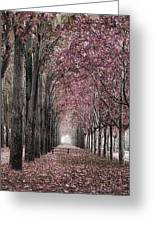 Autumn In The Grove Greeting Card by Angel Jesus De la Fuente