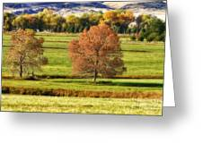 Autumn Landscape Dream Greeting Card by James BO  Insogna