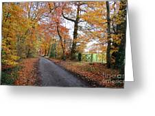 Autumn Leaves Greeting Card by Harold Nuttall