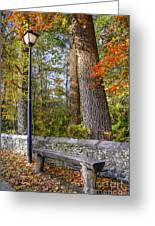 Autumn Light Greeting Card by Benanne Stiens