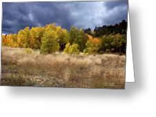 Autumn Meadow Greeting Card by Carol Cavalaris