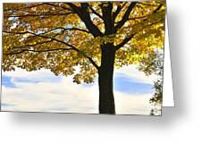 Autumn park Greeting Card by Elena Elisseeva