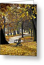 Autumn Park In Toronto Greeting Card by Elena Elisseeva