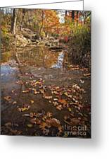 Autumn Reflections Greeting Card by Iris Greenwell