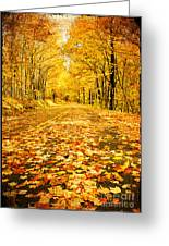 Autumn Road Greeting Card by Darren Fisher