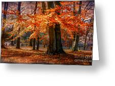 autumn skirt III Greeting Card by Hannes Cmarits