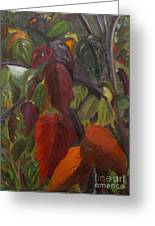 Autumn Splendor Greeting Card by Art Hill Studios