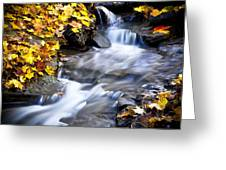 Autumn Stream No 2 Greeting Card by Kamil Swiatek