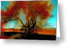 Autumn Tree Greeting Card by Bonnie Bruno