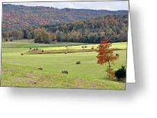 Autumn Valley Hay Bales Greeting Card by Jan Amiss Photography