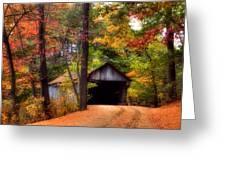Autumn Wonder Greeting Card by Joann Vitali