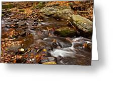 Autumns Creek Greeting Card by Karol  Livote