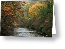 Autumn's Splendor Greeting Card by TnBackroads Photography