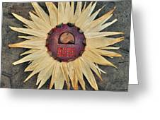 Aztec Industry  Greeting Card by Vanessa Williams