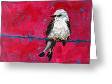 Baby Bird On A Wire Greeting Card by Patricia Awapara