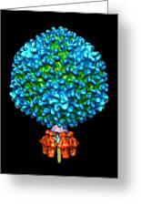 Bacteriophage P22, Computer Model Greeting Card by Gabriel Lander