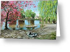 Bakewell Bridge - Derbyshire Greeting Card by Trevor Neal