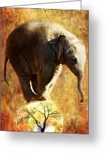 Balance Greeting Card by Trudi Simmonds