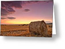 Bales At Twilight Greeting Card by Evgeni Dinev