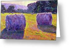 Bales Of Hay Greeting Card by Michael Camp