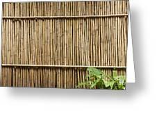 Bamboo Fence Greeting Card by Don Mason