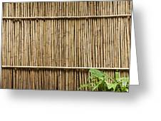 Bamboo Fence Greeting Card by Don Mason