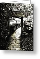 Bamboo Garden - 1 Greeting Card by Alan Hausenflock