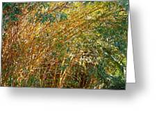 Bamboo Stand Please Buy Me Greeting Card by Michael Clarke JP