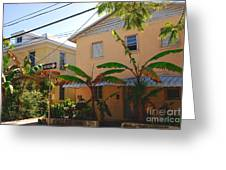 Banana Tree Lane In Key West Greeting Card by Susanne Van Hulst