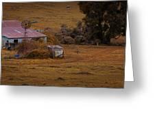 Barn Yard Greeting Card by Tim Nichols