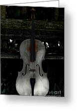 Barnyard Cello Greeting Card by Steven  Digman