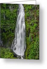 Barr Creek Falls Greeting Card by Greg Nyquist