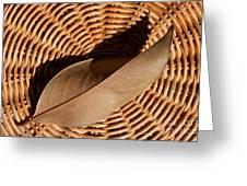 Basket Of Brown Greeting Card by Dan Holm