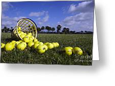 Basket Of Golf Balls Greeting Card by Skip Nall