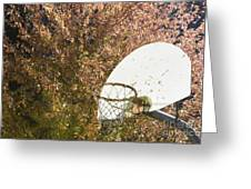 Basketball Hoop Greeting Card by Andersen Ross