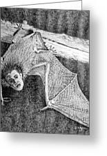 Bat Man Greeting Card by Arline Wagner