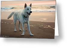 Beach Day Greeting Card by Tyra  OBryant