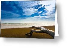Beach Greeting Card by Nawarat Namphon