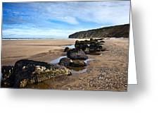 Beach Stones Greeting Card by Svetlana Sewell