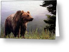 Bear In The Woods Greeting Card by Wayne Pascall