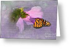Beautiful In Pink Greeting Card by Betty LaRue