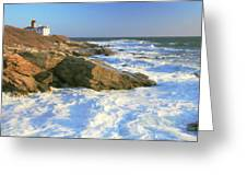 Beavertail Point And Lighthouse  Greeting Card by Roupen  Baker