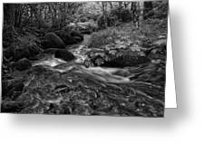 Becky Falls Down Stream Greeting Card by Jay Lethbridge