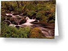 Becky Falls On Dartmoor's National Park Greeting Card by Jay Lethbridge