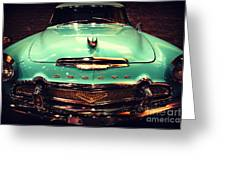 Bello Desoto  Greeting Card by Susanne Van Hulst