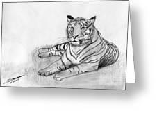 Bengal Tiger Greeting Card by Shashi Kumar