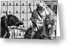 Berber Bw Greeting Card by Chuck Kuhn